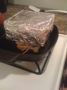 panini brick